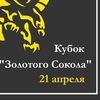 """Кубок """"Золотого Сокола"""" по дуэльному фехтованию"""