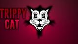 TRIPPY CAT 2019 BEST OF JANUARY HIGH ACID MINIMAL TECHNO MIX