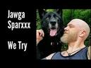 We Try - JAWGA SPARXXX