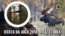 Охота на лося 2018/Подготовка/Hunting for moose
