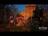 Прохождение Ведьмак 3 Дикая Охота Часть 10 Ведьмы кривоуховых топей