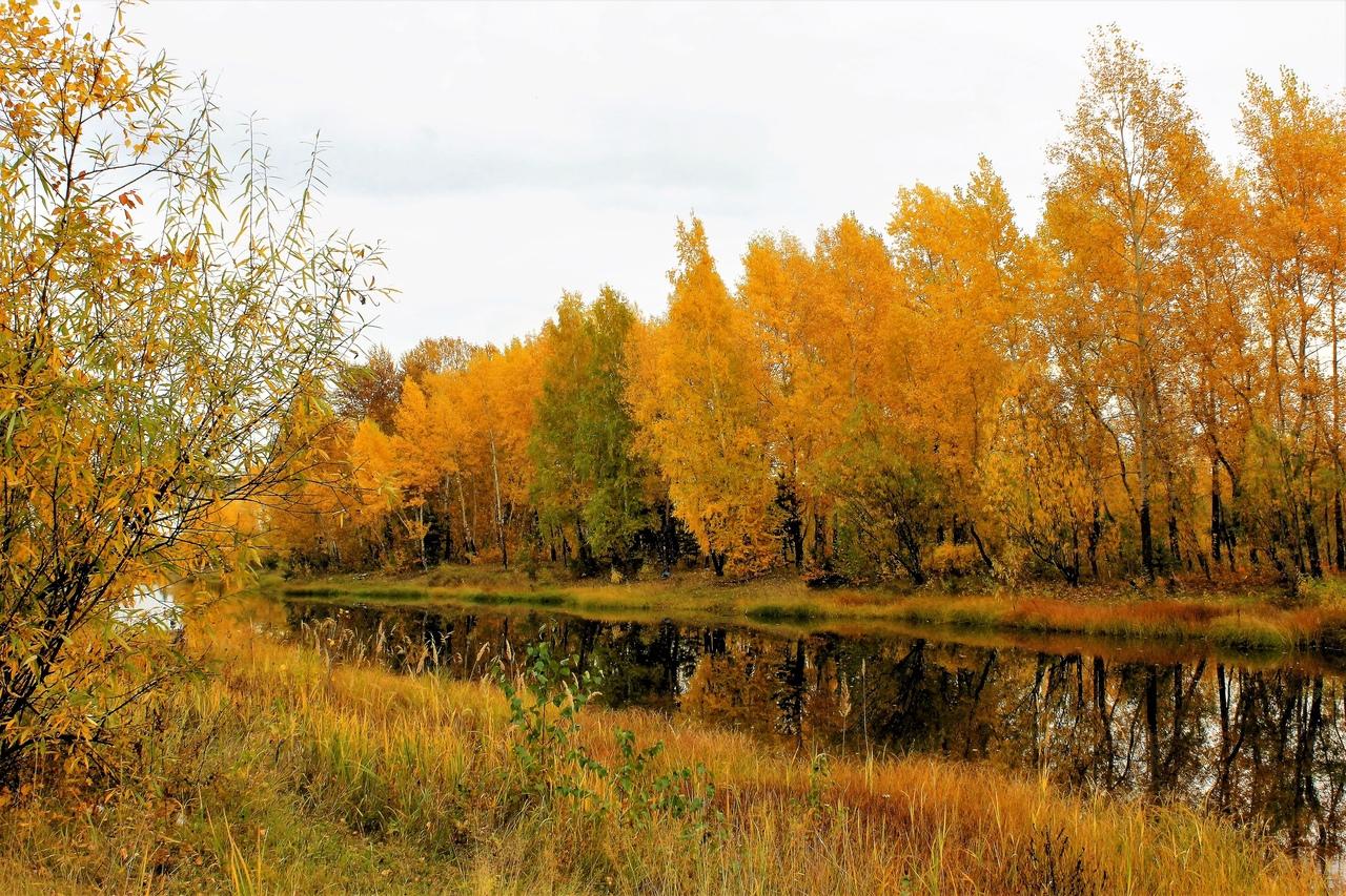 находятся фото красноярск осень они достаточно широко