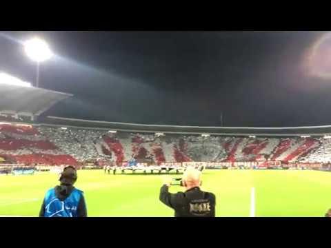Delije Koreografija Crvena zvezda Napoli 0 0