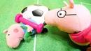 Свинка Пеппа — Мультики для детей — Свинки занимаются спортом