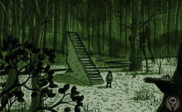 Загадочные лестницы, затерянные в лесных дебрях