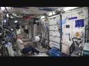 Восстание машин на МКС: робот отказался выполнить просьбу астронавта