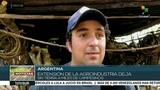 Argentina ordenan desalojo de familias campesinas