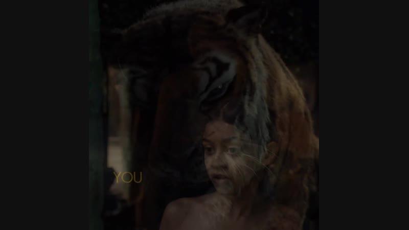 Mowgli - Shere Khan