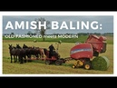 Amazing! Amish mules pull modern baler. Old-fashioned meets modern technology, aerial drone view.