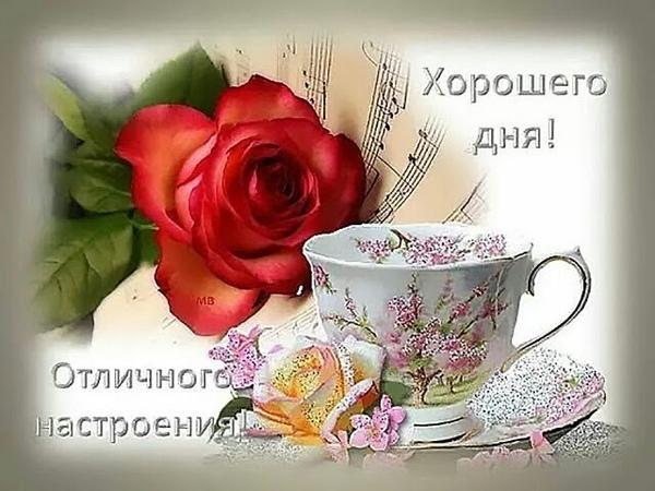 Желаю всем отличного денёчка!