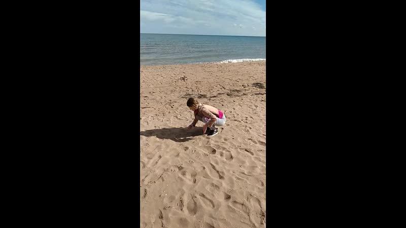 собираю ракушки на Азовском море