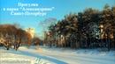 Зимняя прогулка в парке Александрино Санкт Петербурга январь 2019