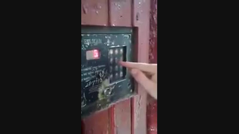 .webm <Игра на домофоне>