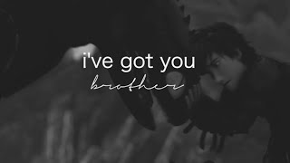 Hiccup Toothless || I've Got You Brother