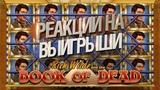 Book of Dead - реакции стримеров казино на заносы в игровом автомате
