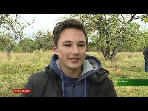 Ученики Супоневской школы провели посадку деревьев около Свенского монастыря