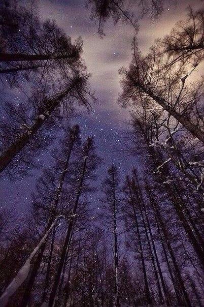 Чаще поднимайте глаза вверх Под гнётом современных проблем, люди всё реже обращают свой взгляд к небу. А зря, ведь именно в небесной синеве таится так много прекрасного, незабываемого и