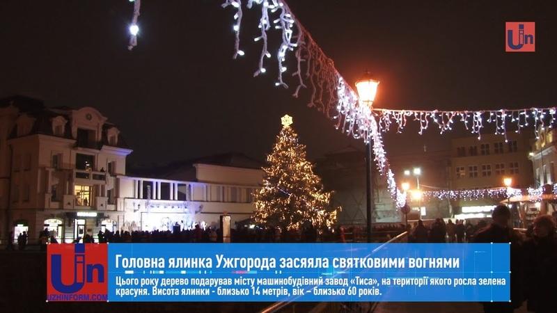 Головна ялинка Ужгорода засяяла святковими вогнями