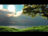 Ах,_русское_солнце_-_КОНТРреволюция_1080P-reformat-16842960.mp4