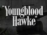 Youngblood Hawke Theme