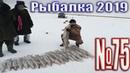 Рыбалка в Казахстане Январь 2019 обзор 75