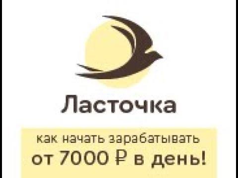 Ласточка, или как новичку с нуля начать зарабатывать от 7000 рублей в день!