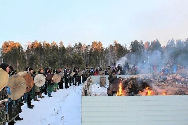 Сжегших верблюдов «для укрепления России» привлекут за живодерство В Иркутской области прокуратура