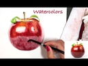 Realistic Red Apple Painting in Watercolor