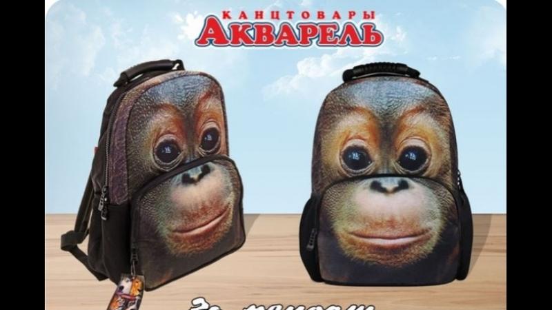 Рюкзак подростк. HD. Trend Line.Orangutan от Сети магазинов Акварель