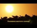Половина желтого солнца Чимаманда Нгози Адичи проза медиа книга
