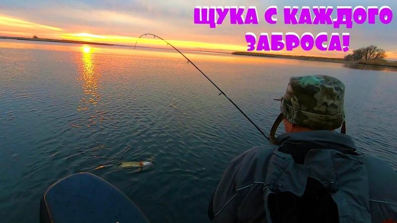 Самый уловистый цвет силикона по щуке на дикой реке! Ловля хищника на Днепре с друзьями!