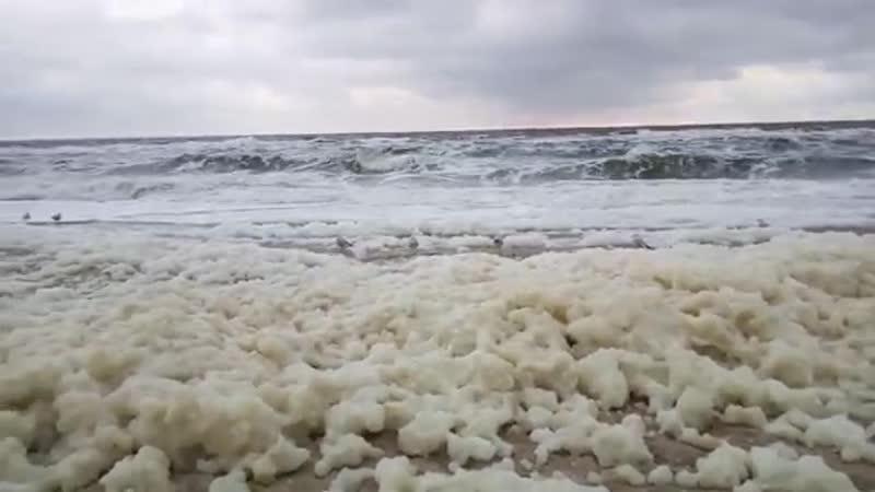 Пена на побережье пляжа Аркадии