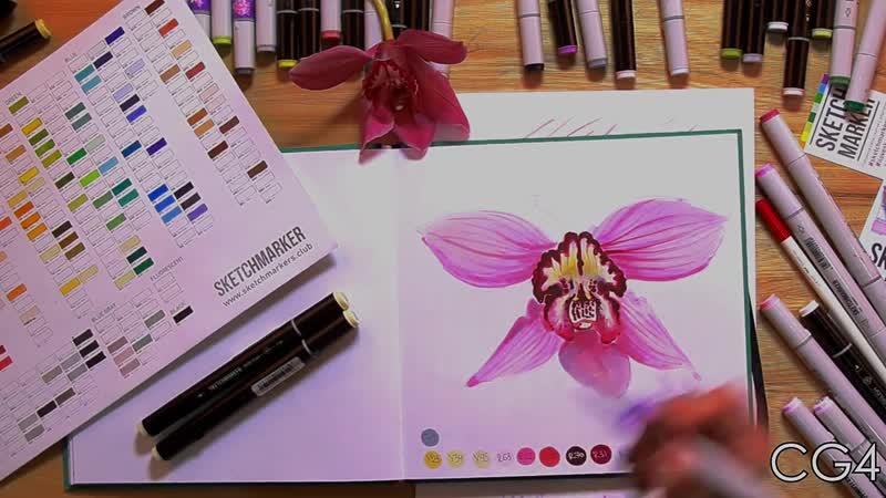 Урок рисования _ Учимся рисовать орхидею маркерами
