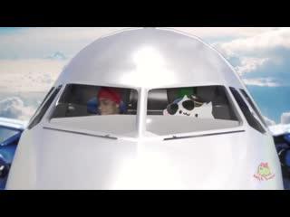 Рикардо милос флексит на самолёте который летит в заебумбию