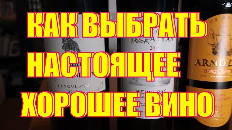 выбор за 500 рублей французского вина в магазине как выбрать вино в магазине и супермаркете