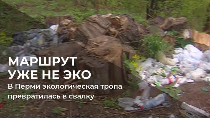 В Перми экологическая тропа превратилась в обычную свалку