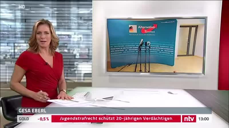 Live- Statement Gauland zum Angriff auf AfD-Politiker Magnitz.mp4