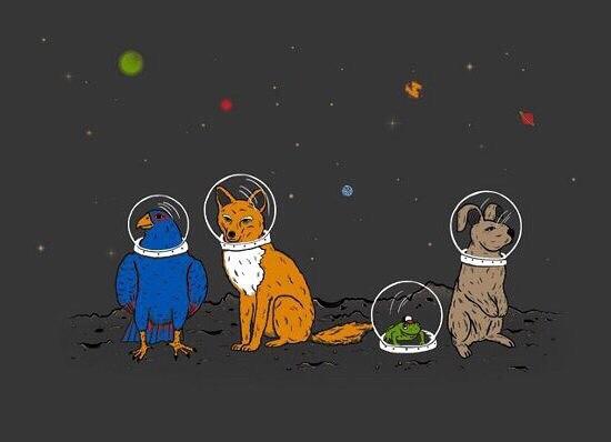 Первые животные в космосе. Белка и Стрелка  собаки-космонавты