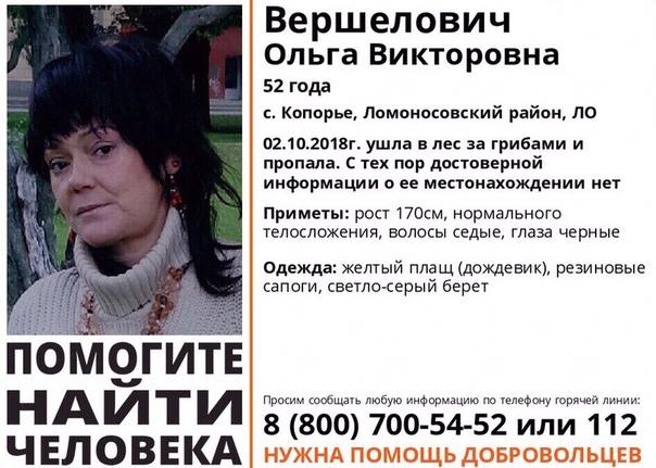 Фото №456262237 со страницы Nini Matveeva