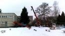 В Советске второй год подряд рубят елку в детском саду