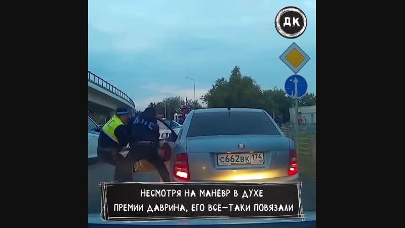 Во Владимире выстроили живой щит  Дерзкий Квадрат