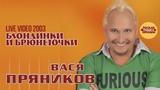 Вася Пряников - Блондинки и брюнеточки (Live 2003)
