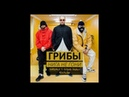 Грибы - Нига, Не Гони (Dj Jedy Remix 2017)