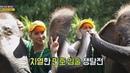♥쪽쪽♥ 민호 Mino 의 입술을 차지하기 위한 치열한 쟁탈전 뭉쳐야 뜬다 Package tour 2 11 54
