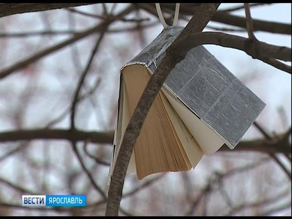 Первомайский бульвар в Ярославле украсило уникальное книжное дерево