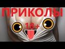 ПРИКОЛЫ 18 Февраль 2019. РУССКИЕ ПРИКОЛЫ. смешные моменты. ржака до слез. юмор.