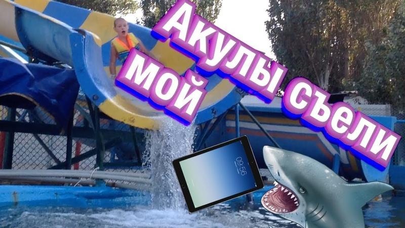 🙀Акулы съели мой планшет. 🦈 Как в аквапарке оказались акулы ❓