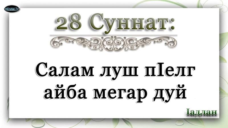 28 Салам луш пIелг айба мегар дуй Iадлан