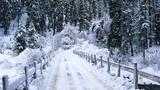 Snow Falling, Windows 7 Video Background, DreamScene (Adobe after effects)