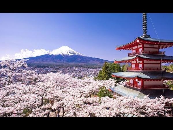 Beautiful Scenery in Japan 8K HDR 60FPS UHD